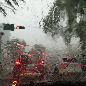 梅雨時期の素材について思う事~着心地と見映えの両立