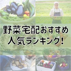 野菜宅配のおすすめ比較ランキング!無農薬野菜や一人暮らし向けもご紹介!