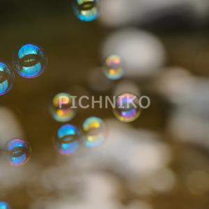 シャボン玉の画像