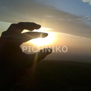 日光をつかむ手の画像