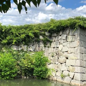 赤穂城西側の櫓跡の石垣の画像