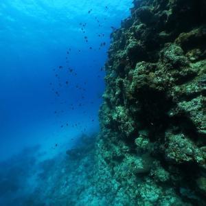 Fisheye17.  続々・久米島