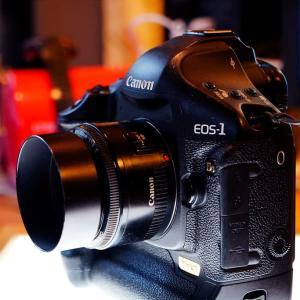番外編438. 虫干し その2. Canon EF50mm/F2.0