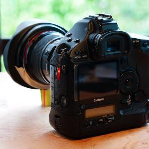 番外編439. 虫干し その3. Canon EF16-35mmL USM/F2.8