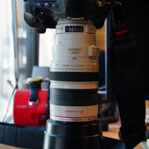 番外編450. 虫干し13. EF100-400mm F/4.5-5.6L IS USM