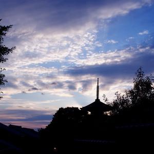 ZEISSの空気130. 梅雨の晴れ間の散歩道8. ツァィス・ブルー