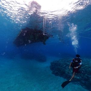 Fisheye42. 水深5mの風景