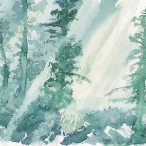 ドローイング481. 小説:小樽の翆409. 森林浴
