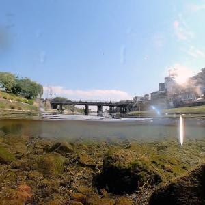 Fisheye44. 普段使いの京都10. 鴨川で水中撮影・・・