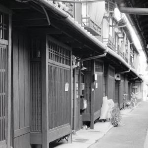Nikon Freak567. 普段使いの京都14. ニコンF3HP+MD4で