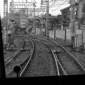 ZEISSの空気134. 普段使いの京都16. 観月橋のあたりを・・・