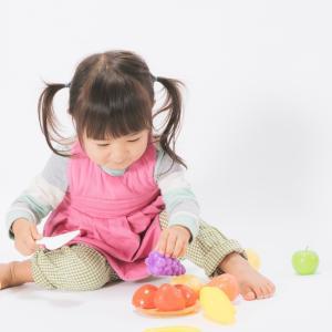 お寿司のおもちゃはどれがいい?1歳、2歳、3歳お寿司のおもちゃ