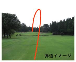 ゴルフに学ぶ、「ボッチャ」のこんなとこ!