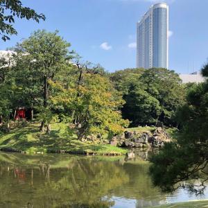 水道橋カフェ「DIXANS」は映えするカフェ♪公園で自然由来の美容について考える