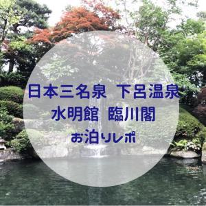 【親子3世代旅行】下呂温泉 水明館の臨川閣【宿泊記】