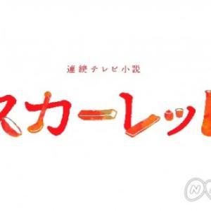 スカーレット第8話 あらすじ(ネタバレ) 感想