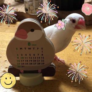 8月のはるなつカレンダー♡