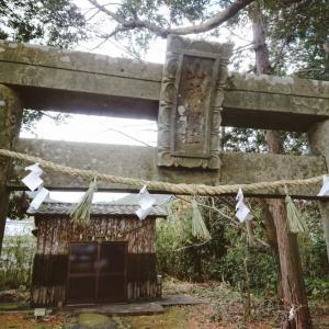 神社のしめ縄&コロコロ