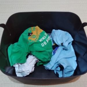 洗濯物畳むの、やめました。の下準備