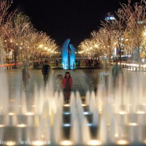 開催前12/1(日)~1/31(金) みなと大通り公園イルミネーションが2019も開催!