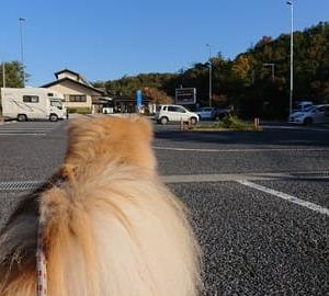 「秋田犬展覧会in岐阜県」ついで旅② 「秋田犬東海北陸展覧会へ」