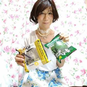初❗青春18きっぷでおでかけ~💞TASKー99 「まだだ、まだ終らんよ!!」・・・ザク豆腐改と百式豆腐と・・・