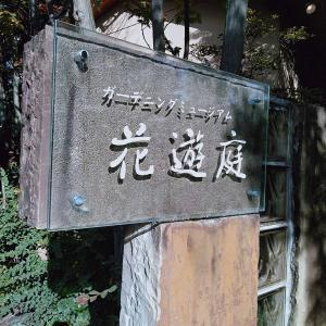 トヨタガーデン花遊庭へ