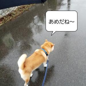 結婚記念日、長野県に行こう(松本観光編)