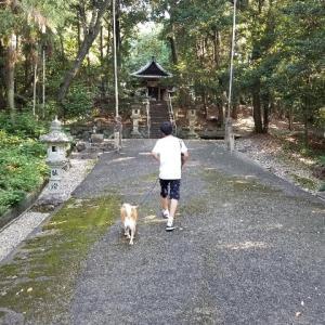 先日の4連休、久し振りに静岡に(一日目)