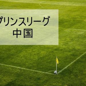 プリンスリーグ中国 | U18高円宮杯 | 歴代最終結果・順位表
