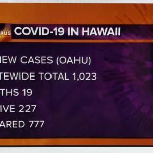 ハワイのコロナ感染者は1000人を超えています。(KHON2)