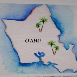 2つのオアフのバーが緊急命令違反のため一時的に閉鎖(Pacific Business News)