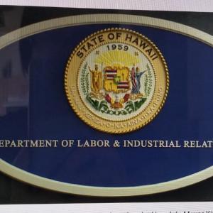 失業保険300ドルの連邦認証が土曜日に開始(KHON2)