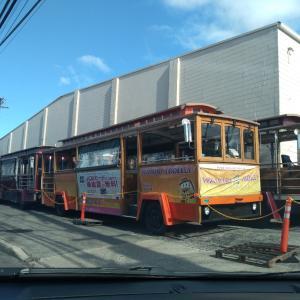 ピンクラインの E Noa Tours さんが、11月2日から一部運行開始