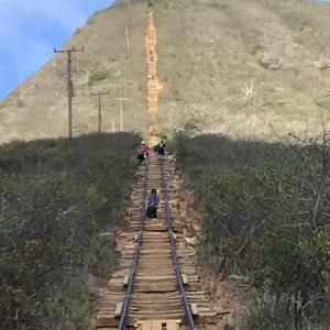 ココヘッドハイキング