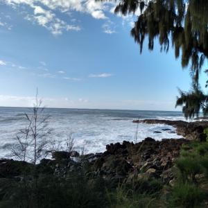 アリイビーチに行って、ボードにつかまって浮いていようと思ったら、、凄い波。諦め...