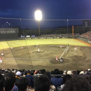 19年ぶりに鹿児島でカープ戦!やっぱり野球は最高です