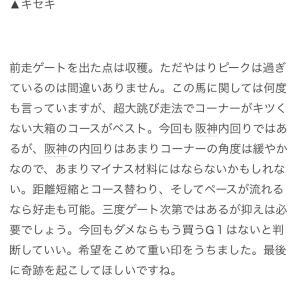 京都大賞典 考察