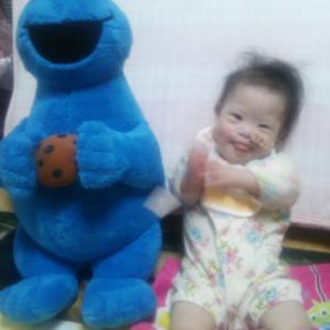 クッキーモンスターと、なっちゃん♡