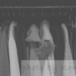 骨格ストレート×パーソナルカラースプリング、「自分に似合う服」を初めて買った話