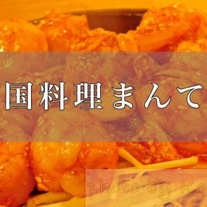 大阪の旅、最後は「韓国料理まんてん」で美味しい料理を堪能!
