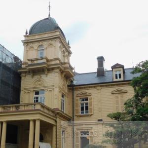 旧岩崎邸庭園へ行ってきたよ!都会にいることを忘れさせてくれる、素敵な場所。