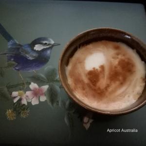Soy milk Cinnamon Coffee