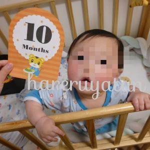 【生後10か月検診】検診のチェック項目と成長目安~息子の場合~