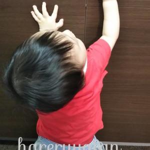 【生後10か月】広がる好奇心!いたずら防止にストッパー設置