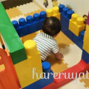 【全身でブロックNeo】1歳の誕生日におすすめ【商品レビュー】