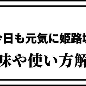 「今日も元気に姫路城」とは?意味や使い方を解説!