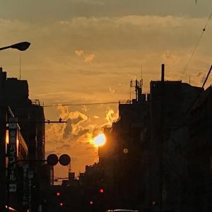 #車窓からの夕陽 (Instagram)