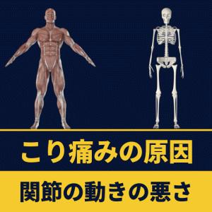 体の凝り痛みの原因のほとんどは関節の動きの欠如