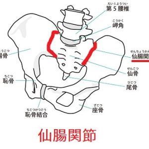 腰痛の9割以上に仙腸関節の関節機能障害が関与している